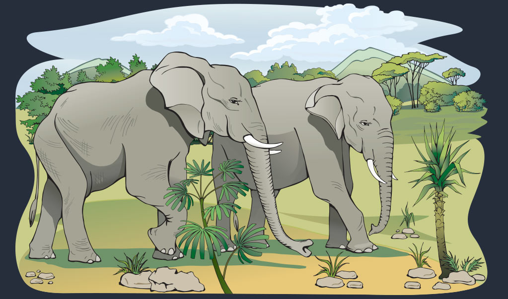 Animals-and-Noah-Ark-Illustration Web Design, Graphic Art